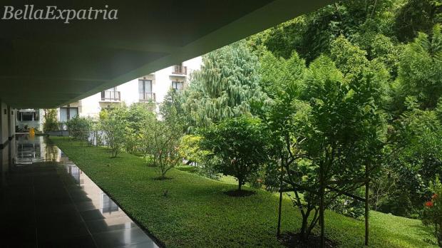 padma-lush-greenery2_wm