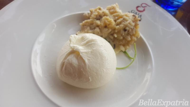 burrata and risotto from Gaia_wm